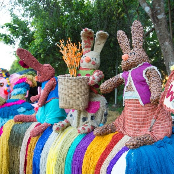 COLORS OF DOI TUNG FESTIVAL